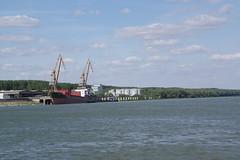 IMGP6797 (Alvier) Tags: rumänien donau donaudelta natur vögel fluss strom delta schiff schifffahrt donaufahrt