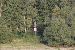 IMGP6805 (Alvier) Tags: rumänien donau donaudelta natur vögel fluss strom delta schiff schifffahrt donaufahrt