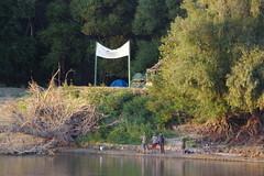 IMGP6806 (Alvier) Tags: rumänien donau donaudelta natur vögel fluss strom delta schiff schifffahrt donaufahrt