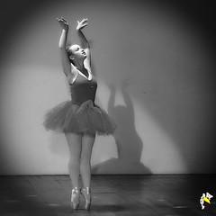 Ela Bailarina (Marcelo Seixas) Tags: beautiful gold dancing mulher linda lovely maravilhosa cady maravilha show woman art star dance bravo arte artistic action best balance performace boavista passo apresentação students muscles perfect young dança jovem roraima palco perfeito espetáculo musculos perfeição danze people love girl canon wow danza surreal tanz tones ballo tons balé bailarino bailariana balletmoderno ballet ballerina balletslippers balet ballerinas balett balerina descalça ballerino descalza piedsnus piedinudi baletki baletka baletky barefoot pieds pidi decalza scalza
