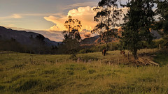 Finca Santa Helena (magnetic_red) Tags: farm clouds sunset mountains pasture horses tranquil nopeople colombia south america