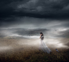Lost and Found ({jessica drossin}) Tags: jessicadrossin wwwjessicadrossincom portrait haze fog macabre jdmacabrecollection lost grief sky ravens crows halloween moody dark grass field view dress woman girl