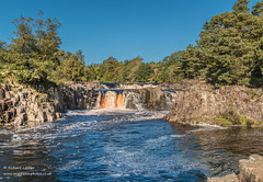 Low Force on a perfect autumn day 2 Oct 2019 (V Pano) (Richard Laidler) Tags: aonb areaofoutstandingnaturalbeauty autumn autumntints bluesky bowlees bright cascades cloudless countydurham deep earlyautumn globalgeopark landscape longdistancefootpath lowforce lowforcewaterfall northeastengland northpennines northpenninesaonb pennine pennineway rivertees sunny sunshine teesdale teesdalelandscape upperteesdale waterfall waterfalls
