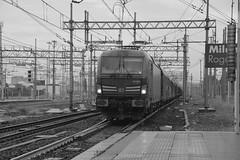 milano area settembre 2019 #8 (train_spotting) Tags: milanorogoredo lenord ferrovienordmilano nordcargo dbcargoitaliasrl vectrondc vectron e1910203inc siemens nikond7100