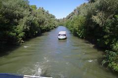 IMGP6766 (Alvier) Tags: rumänien donau donaudelta natur vögel fluss strom delta schiff schifffahrt donaufahrt