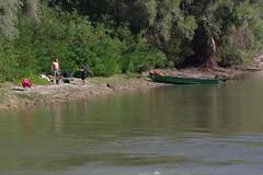 IMGP6771 (Alvier) Tags: rumänien donau donaudelta natur vögel fluss strom delta schiff schifffahrt donaufahrt