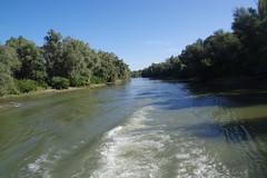 IMGP6772 (Alvier) Tags: rumänien donau donaudelta natur vögel fluss strom delta schiff schifffahrt donaufahrt