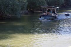 IMGP6773 (Alvier) Tags: rumänien donau donaudelta natur vögel fluss strom delta schiff schifffahrt donaufahrt