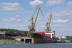 IMGP6799 (Alvier) Tags: rumänien donau donaudelta natur vögel fluss strom delta schiff schifffahrt donaufahrt