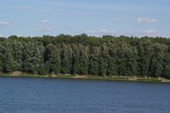 IMGP6801 (Alvier) Tags: rumänien donau donaudelta natur vögel fluss strom delta schiff schifffahrt donaufahrt