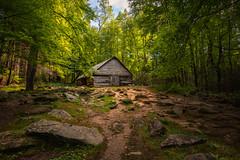 Ogel Barn (ALP Images) Tags: gsmnp greatsmokeymountainnationalpark barn farm rocks forest trees