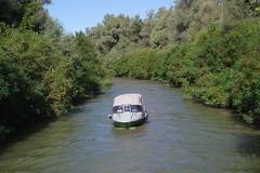IMGP6765 (Alvier) Tags: rumänien donau donaudelta natur vögel fluss strom delta schiff schifffahrt donaufahrt