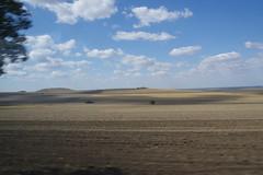 IMGP6788 (Alvier) Tags: rumänien donau donaudelta natur vögel fluss strom delta schiff schifffahrt donaufahrt