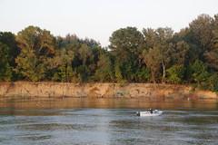 IMGP6811 (Alvier) Tags: rumänien donau donaudelta natur vögel fluss strom delta schiff schifffahrt donaufahrt