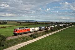 232 498 DB (uhrpfälzer) Tags: eisenbahn zug güterzug klv containerzug br232 herbertingen umleiter