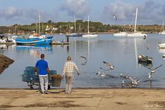 Preparing the lobster traps (Thijs de Bruin) Tags: kreeft fuik val traps alvor portugal lobster boats haven harbour seaguls birds fisherman vissers water sea ngc