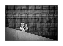 Photographer on Guggenheim steps (tkimages2011) Tags: photographer steps camera man building monochrome museum architecture mono spain graphic bilbao diagonal guggenheim rectangles lines outside outdoor sheets titanium abstract contemporary solo