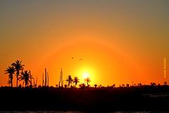 Quarta-sunset (sonia furtado) Tags: quartasunset sunset pds contraluz pordosol icapuí ceará ce ne brasil brazil soniafurtado frenteafrete
