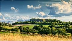 Eine Sommerlandschaft hinter gelben Gras (linke64) Tags: thüringen deutschland germany gras gebäude gebüsch gelb grün landschaft natur himmel herbst felsen wolken wolkenhimmel sommer baum bäume feld wiese rahmen