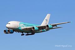 9H-MIP   A388  HFM (Keith Wignall) Tags: man a380 hfm specialcolours