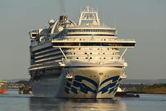 Crown Princess - Hound Point -.- 07-09-19 (MarkP51) Tags: crownprincess houndpoint firthofforth cruise liner ship boat vessel sea water sunshine sunny nikon d7200 nikonafp70300fx scotland