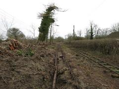 Track Lifting (Tanllan) Tags: leighton buzzard narrow gauge railway stonehenge works rail road railroad mundays hill track lifting