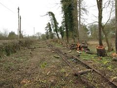 Rails & Logs (Tanllan) Tags: leighton buzzard narrow gauge railway stonehenge works rail road railroad mundays hill track lifting