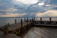Ilha Canela. Palmas - Tocantins. Set/2019 (deborasasaki) Tags: lagoa lago beach tarde brazil brasil tocantins palmas canela da ilha praia