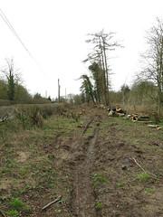 Mundays Hill End of the Double Track (Tanllan) Tags: leighton buzzard narrow gauge railway stonehenge works rail road railroad mundays hill track lifting