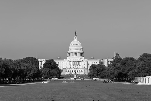 U.S. Capitol in Monochrome