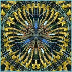 WILLKOMMENIM(echten?)LEBEN... (schau_ma_da) Tags: 2604 album0 berlin deutschland diezin fensterspiegelung flickr giraffe legoland nfachspiegelungen nikond5300 polarkoordination polarkoordiniertes potsdamerplatz quadrat schaumada schaufenster tamron70300