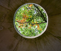 Photo of Inside Looking Out, Jupiter Artland
