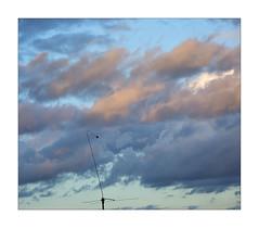 pastel sky (Armin Fuchs) Tags: arminfuchs sky clouds antenna blue yellow pastel würzburg 6x7 autumn