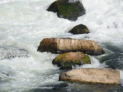Bottom of the Falls (annette.allor) Tags: