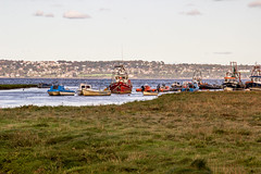 2019 - 10 - 02 - EOS 600D - Bettisfield - Wales Coast Path - 002 (s wainwright) Tags: 2019 october walescoastpath bettisfield flintshire flintshirescoast northwalescoast northwales newales canon600d eos600d