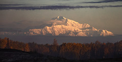 Mt. McKinley in the Morning (Kim Tashjian) Tags: mtmckinley denali alaska