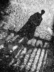 20130718-876 (sulamith.sallmann) Tags: abgrenzung bassenormandie bw europa female fence france frankreich frau gatter lahague manche mensch menschen myself normandie people person personen schatten selbst self shadow siouville sw woman zaun zäune sulamithsallmann