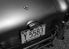 Cobra (William 74) Tags: shelby cobra classiccar vintageracing vintagecar logo chrome blackandwhite bw blackwhite licenseplate nose taillight