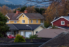 Roofs (Linnea from Sweden) Tags: nikon d7000 afs nikkor 1870mm 13545g dx swm ed if aspherical landscape roof building autumn house tree nature color colour