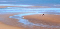 Tidal Flats, Cossack, Western Australia_0475 (Irwin Reynolds photo eXpressions) Tags: tidalflats cossackwestaustralia readerheadlookout westaustralianghosttowns historicghosttowns ghosttowns pilbaracoast karratha westaustraliancoast couplesonthebeach walkersonthebeach beachwalkers dogsonthebeach dogowners pets