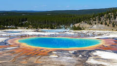 Great Prismatic Spring (ValeTer_) Tags: natural landscape wilderness water resources swimming pool national park vacation lake geology tree nikon d7500 usa wy wyoming yellowstone nps nature nikond7500 nationalpark yellowstonenationalpark