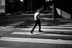 crossing (gato-gato-gato) Tags: apsc fuji fujifilmx100f street streetphotographer x100f autofocus flickr gatogatogato pocketcam pointandshoot streetphoto streetpic wwwgatogatogatoch black white schwarz weiss bw monochrom monochrome blanc noir streetphotography strasse strase onthestreets streettogs mensch person human pedestrian fussgänger fusgänger passant schweiz switzerland suisse svizzera sviss zwitserland isviçre zuerich zurich zurigo zueri fujifilm fujix x100 x100p digital