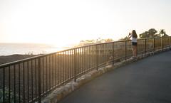 Teen Girl in Heisler Park - Laguna Beach, California (ChrisGoldNY) Tags: chrisgoldphoto chrisgoldny chrisgoldberg bookcovers albumcovers licensing sony sonyalpha sonya7rii sonyimages lagunabeach california socal cali orangecounty laguna westcoast girl girls people women sunset heislerpark fences fence