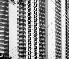 windows (paologmb) Tags: miami facade windows architectural multiple tower abstract blackandwhite residential