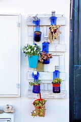 Out of the blue  - EXPLORE October 3rd, 2019 (Micheo) Tags: spain menorca macetas pots reusing recycling botellas bottles azul blue explore ok best