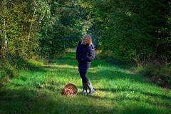 A Lucky Strike | Fine Harvest I (picsessionphotoarts) Tags: deutschland germany nikon nikonphotography nikonfotografie nikond850 moments afsvrmicronikkor105mmf28gifed autumn herbst zeven zevenniedersachsen niedersachsen lowersaxonia pilze mushrooms wald wood imwald inthewoods lichtundschatten lightandshades