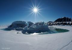 Iceberg Farewell (Eden Bromfield) Tags: nunavut bylotisland arctic iceberg icebergremnants edenbromfield baffinisland seaice ice sun landscape canada mountains snow