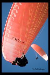Parapente / Paragliding (danha703) Tags: parapente paragliding nikond800 colou sport action nikonflickraward