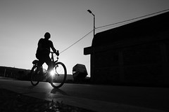 Bicyclist (stefan.pavic1) Tags: street sun sunset sunflare bnw blackandwhite monochrome streetphoto dimitrovgrad serbia fujifilm xe2 silhouette outdoor