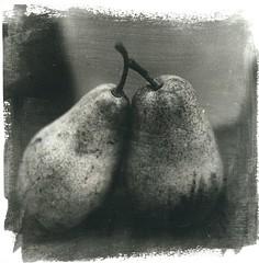 Pear Love (Mark Dries) Tags: markguitarphoto markdries darkroomprint darkroom liquidemulsion foma hahnemuehle brittannia 30x30 hasselblad500cm 80mm28 planar carlzeiss extensiontube 21mm closeup